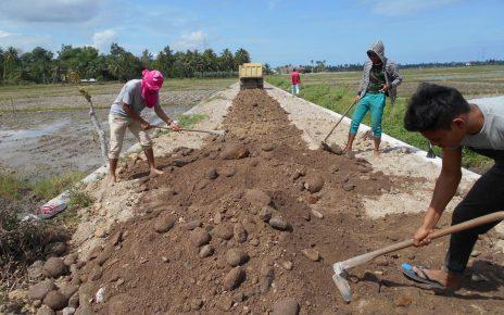 Dana Desa dan Lapangan Kerja