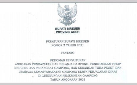 Perbup Bireuen Nomor 2 Tahun 2021 Pedoman Penyusunan APBG